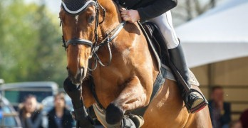 The Royal Windsor Horse Show; A Highlight in NSR's Calendar